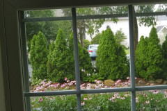 West out of office window overlooking driveway garden